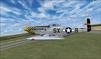Wings of Power P-51D Left Wing Camera View