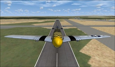 Wings of Power P-51D Nose Camera View